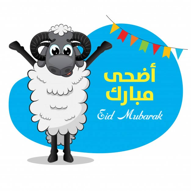 Eid al adha sheep greeting